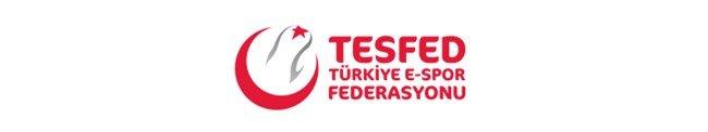Türkiye Espor Federasyonu Espor Takımı İşlemleri